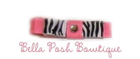 Pink Zebra Clippie-zebra, pink, pink zebra, clippie